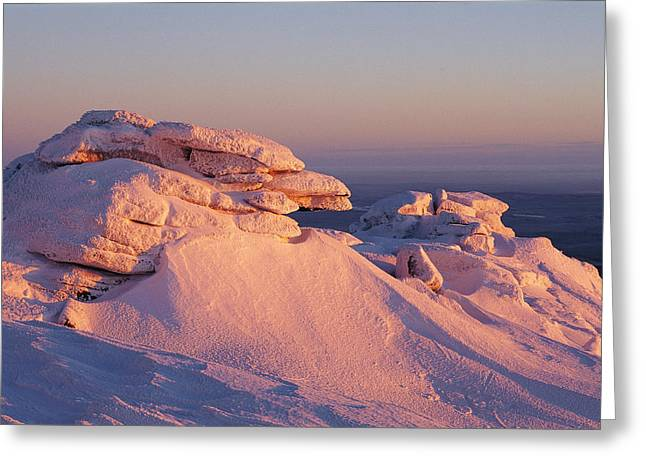 Brocken Greeting Cards - Winter View Of The Top Of Brocken Greeting Card by Norbert Rosing