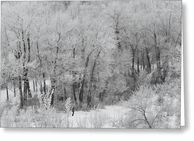 Mark Lehar Greeting Cards - Winter Walk Greeting Card by Mark Lehar