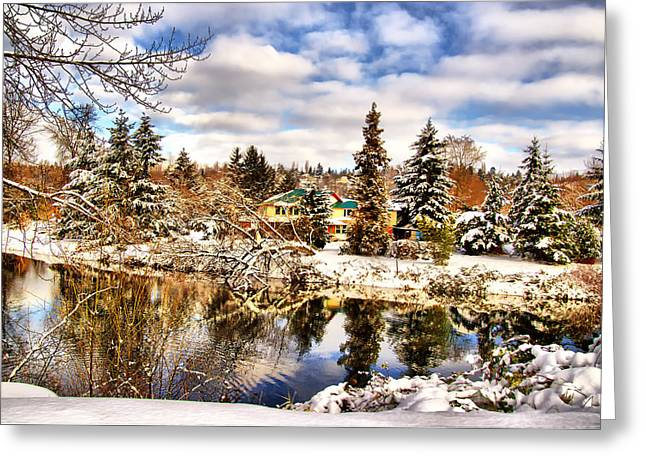 Framed Winter Snow Photograph Greeting Cards - Winter Wonderland Greeting Card by James Heckt