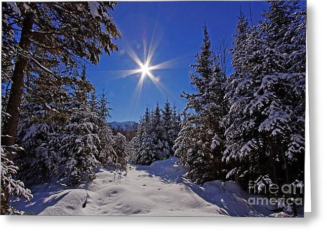 Lloyd Alexander Greeting Cards - Winter Wonderland Greeting Card by Lloyd Alexander