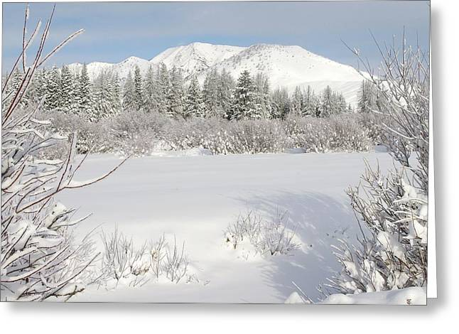 Skies Reliefs Greeting Cards - Winter Wonderland Windy Mountain Wyoming Greeting Card by Sherri Meikle