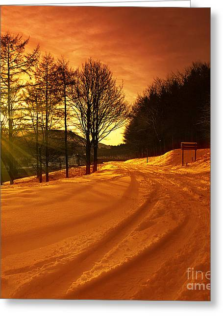 Winter World Greeting Card by Nigel Hatton