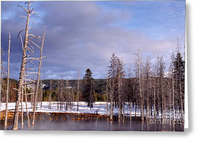 Super Volcano Greeting Cards - Winter Yellowstone National Park Greeting Card by Thomas R Fletcher
