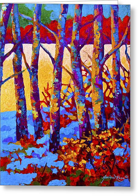 Birch Trees Greeting Cards - Winters Promise Greeting Card by Marion Rose