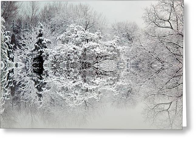 Snow Tree Prints Photographs Greeting Cards - Winters tale Greeting Card by Sharon Lisa Clarke