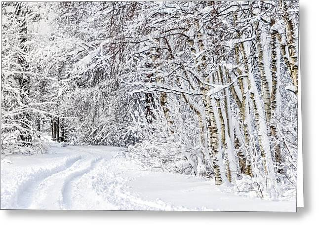 Winterly Forest Greeting Cards - Wintry Road Greeting Card by Mailis Laos