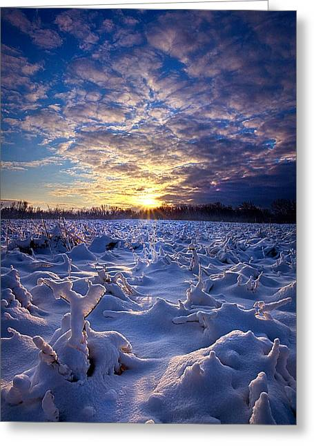 Geographic Greeting Cards - Wisconsins Winter Wonderland Greeting Card by Phil Koch