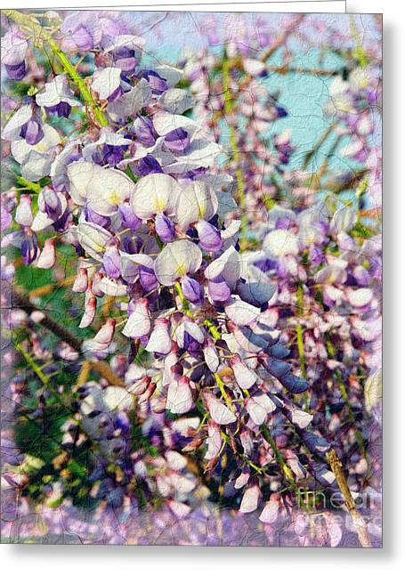 Foliage Fragrance Greeting Cards - Wispy Wisteria Greeting Card by Andee Design