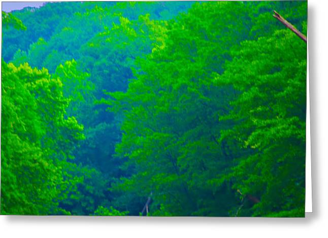 Wissahickon Creek Greeting Card by Bill Cannon