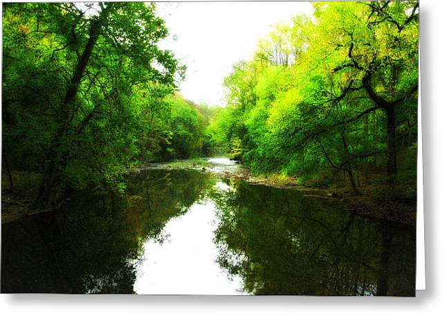 Wissahickon Creek Greeting Cards - Wissahickon Morning Greeting Card by Bill Cannon