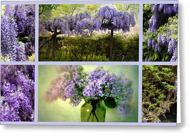 Botanical Greeting Cards - Wisteria Collection Greeting Card by Jessica Jenney