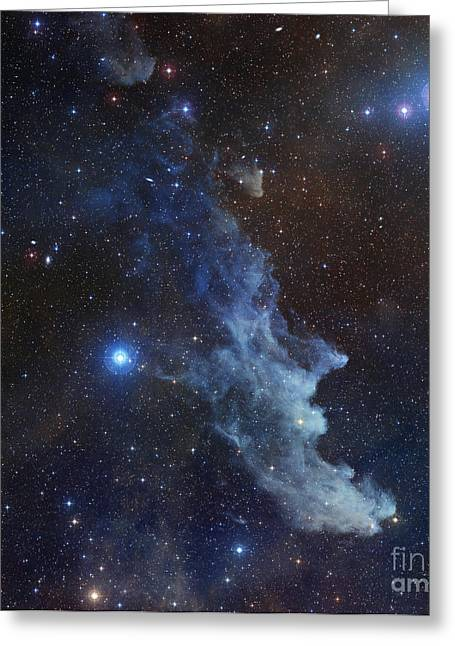 Stellar Remnant Greeting Cards - Witch Head Nebula Greeting Card by Stocktrek Images