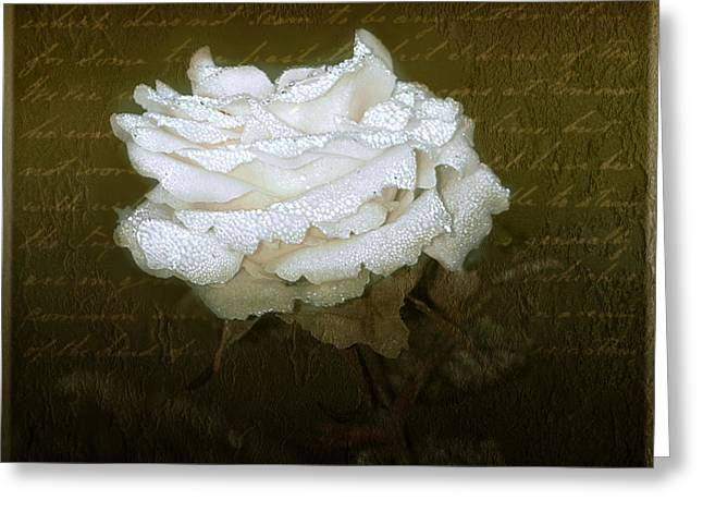 Dew Digital Art Greeting Cards - With Love Greeting Card by Holly Kempe