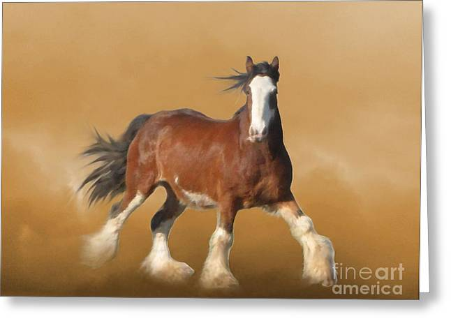 Equine Greeting Cards - ...With...Fury He Devoureth the Ground Greeting Card by Angela Marks