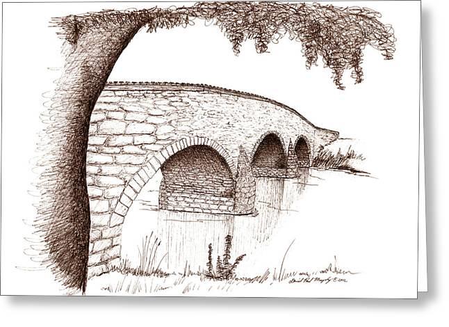 Journal Drawings Greeting Cards - Witness Tree and Burnside Bridge Greeting Card by Daniel Paul Murphy