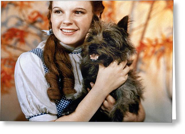 WIZARD OF OZ, 1939 Greeting Card by Granger