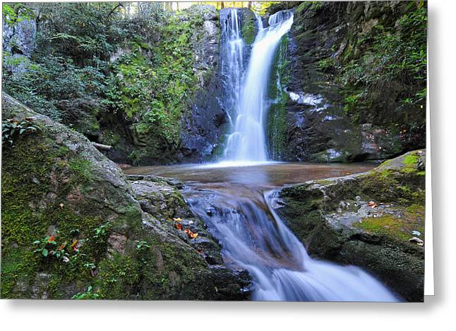 Wolf Creek Greeting Cards - Wolf Creek Falls Greeting Card by Alan Lenk