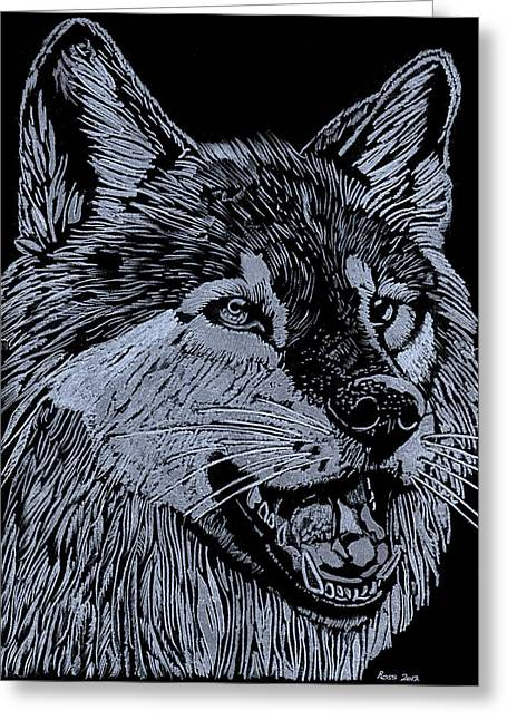 Wolf Glass Greeting Cards - Wolfie Greeting Card by Jim Ross