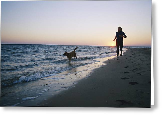 Jogging Greeting Cards - Woman And Dog Running On Beach, Nags Greeting Card by Skip Brown