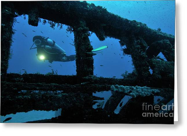 Undersea Photography Greeting Cards - Woman diver with torch exploring shipwreck Greeting Card by Sami Sarkis