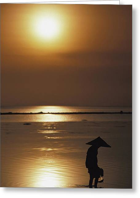 Sun Hat Greeting Cards - Woman In Conical Hat Collecting Shell Greeting Card by Axiom Photographic