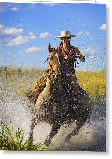 Mid Adult Women Greeting Cards - Woman Riding A Horse Greeting Card by Richard Wear