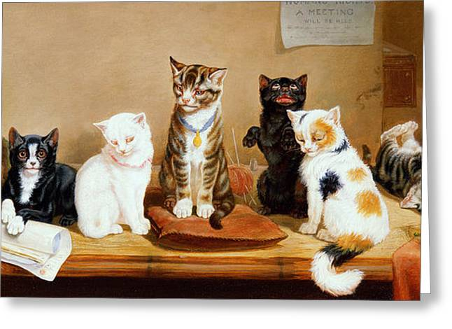 Cute Kitten Greeting Cards - Women Rights A Meeting Greeting Card by William Henry Hamilton Trood