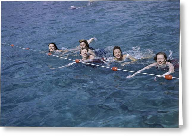 By Humans Greeting Cards - Women Swim In A Municipal Swimming Pool Greeting Card by B. Anthony Stewart