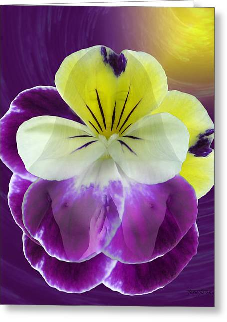 Floral Digital Art Digital Art Greeting Cards - Wonder Greeting Card by Torie Tiffany
