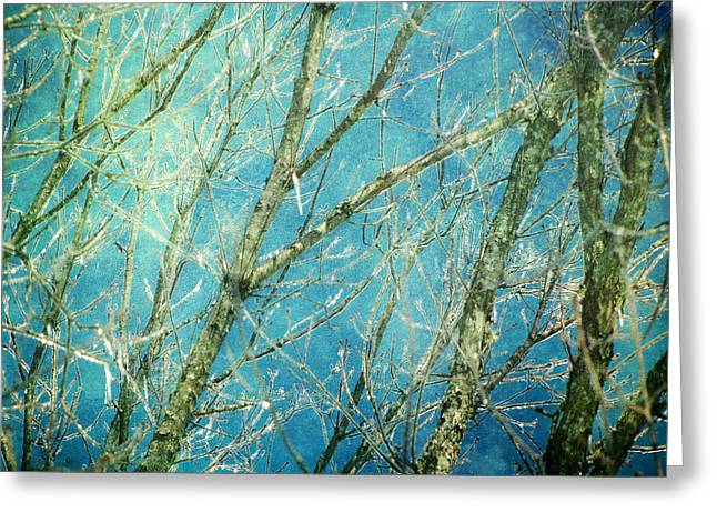 Snow Abstract Greeting Cards - Wonderland Greeting Card by Amy Tyler