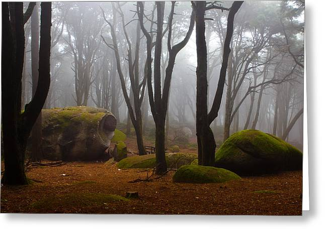 Forests Greeting Cards - Wonderland Greeting Card by Jorge Maia