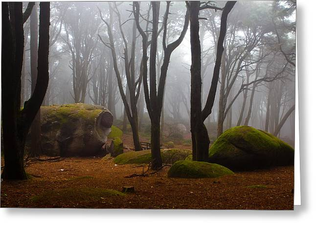 Wonderland Greeting Card by Jorge Maia
