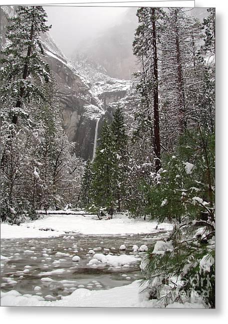 Yosemite Creek Greeting Cards - Wonderland Yosemite Greeting Card by Heidi Smith