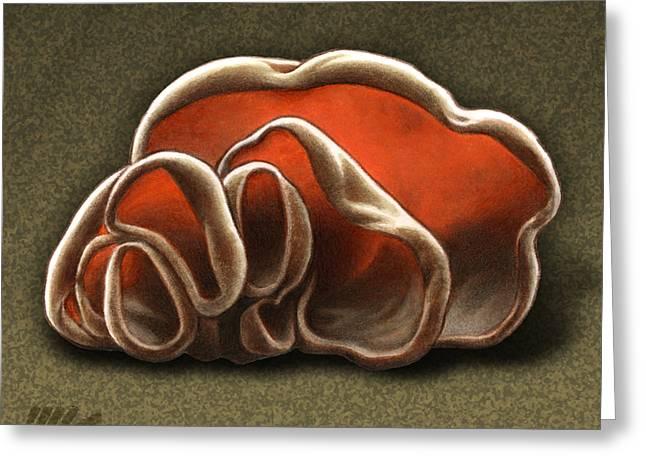 Toadstools Greeting Cards - Wood Ear Mushrooms Greeting Card by Marshall Robinson
