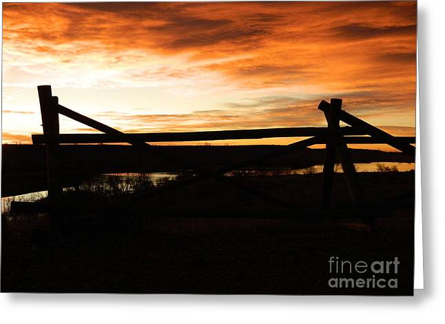 Fort Collins Greeting Cards - Wood Fence Sunrise Greeting Card by Sara  Mayer