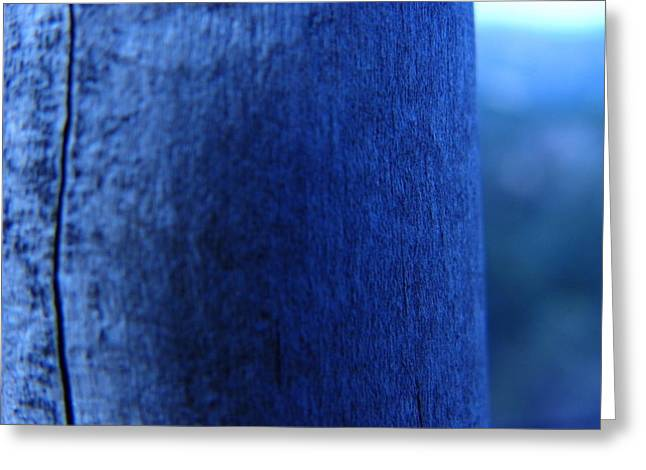 Gnarly Greeting Cards - Wood You In Blue Greeting Card by Aric Conall