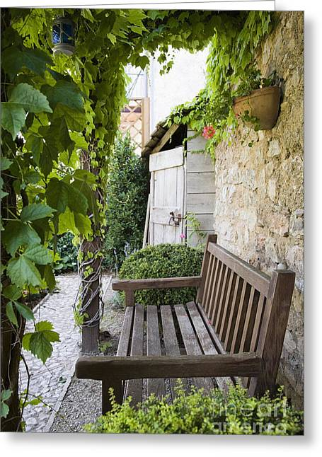 Wood Bench Greeting Cards - Wooden Bench in Garden Greeting Card by Andersen Ross