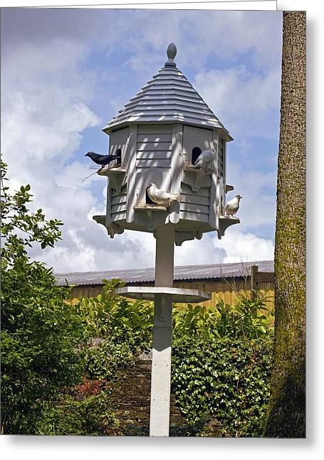 Dovecote Greeting Cards - Wooden Dovecote Greeting Card by Dr Keith Wheeler