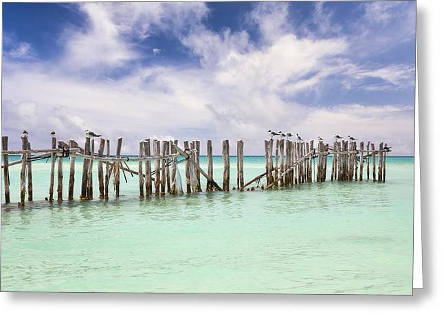 Man Made Space Greeting Cards - Wooden Fence Extending Into Ocean Greeting Card by Bryan Mullennix