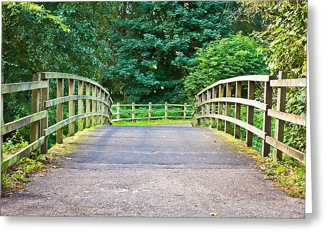 Marsh Path Greeting Cards - Wooden footbridge Greeting Card by Tom Gowanlock