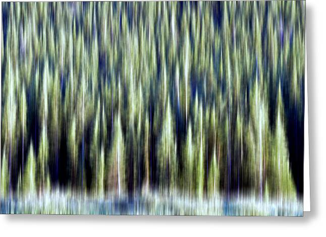 Ponderosa Pine Greeting Cards - Woodland Abstract Greeting Card by The Forests Edge Photography - Diane Sandoval