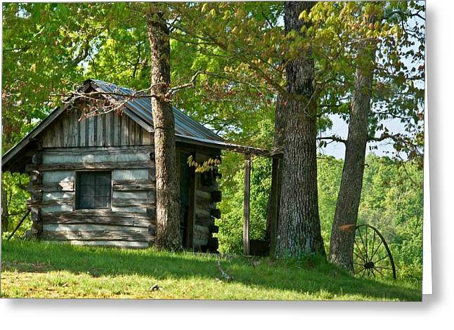 Tin Roof Greeting Cards - Woodland Cabin 1 Greeting Card by Douglas Barnett