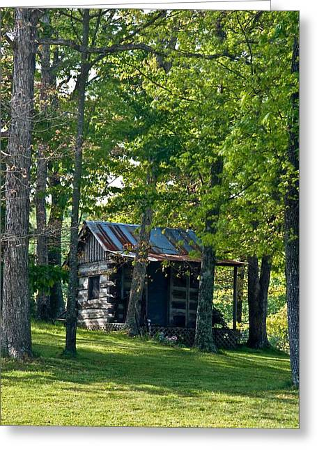 Tin Roof Greeting Cards - Woodland Cabin 3 Greeting Card by Douglas Barnett
