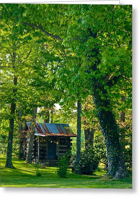 Tin Roof Greeting Cards - Woodland Cabin 4 Greeting Card by Douglas Barnett