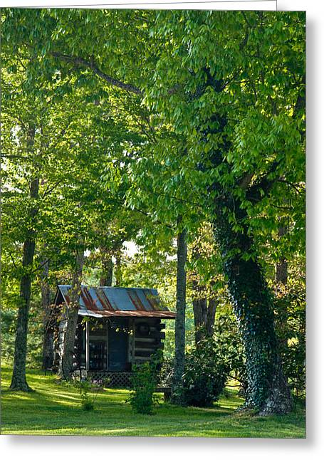 Tin Roof Greeting Cards - Woodland Cabin 5 Greeting Card by Douglas Barnett