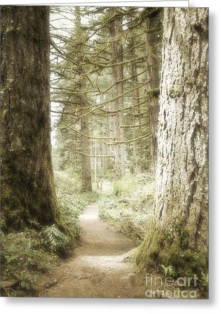 Pacific Ocean Prints Greeting Cards - Woodland Daydream Greeting Card by Andrea Hazel Ihlefeld