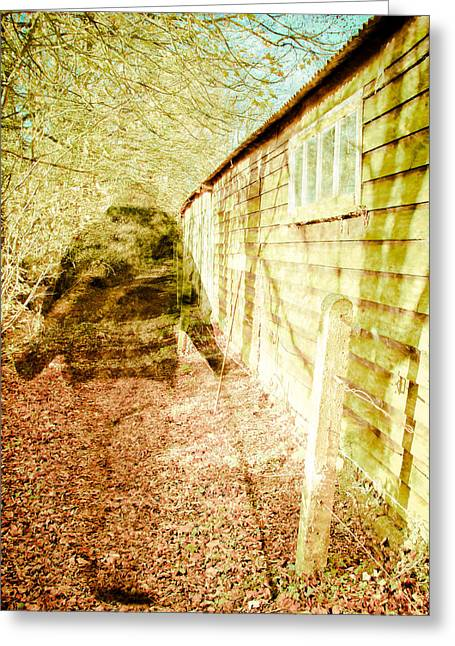 Woodland Scenes Greeting Cards - Woodland ghost Greeting Card by Tom Gowanlock