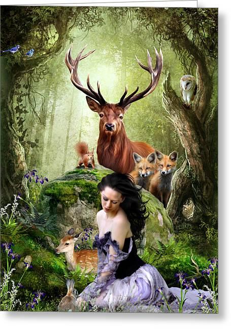 Woodland Wonders Greeting Card by Julie L Hoddinott