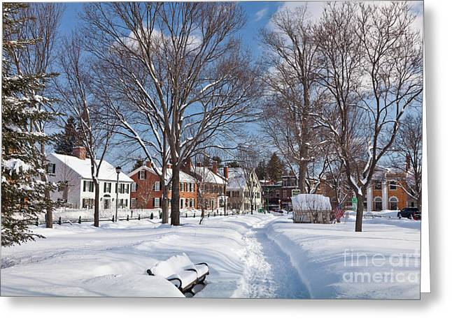 Woodstock Green Greeting Card by Susan Cole Kelly