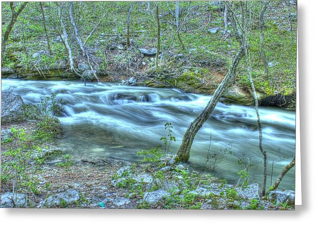 Babbling Brooks Greeting Cards - Woodsy Stream Greeting Card by Geary Barr